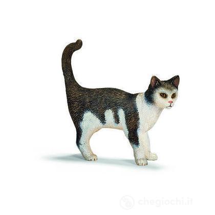 Gatto in piedi (13638)
