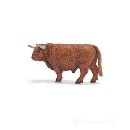 Toro Highlander scozzese (13658)