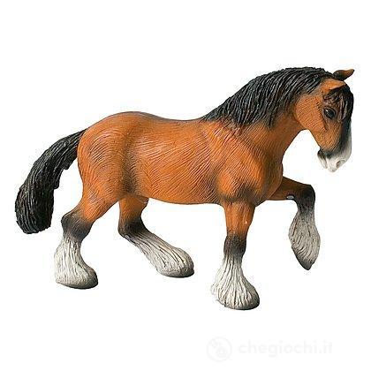 Cavalli - Shire Horse Gelding (62666)