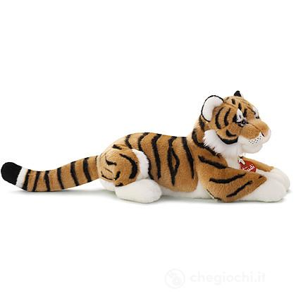 Tigre Sasha media (27666)