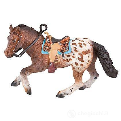 Cavalli - Appaloosa Stallion (62668)
