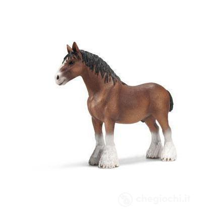 Stallone Clydesdale (13670)