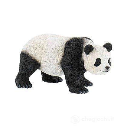 Panda (63678)