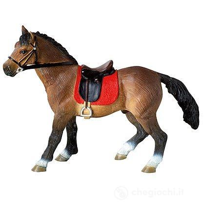 Cavalli - Hanoverian Stallion (62682)