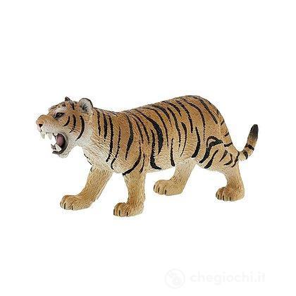 Tigre (63683)