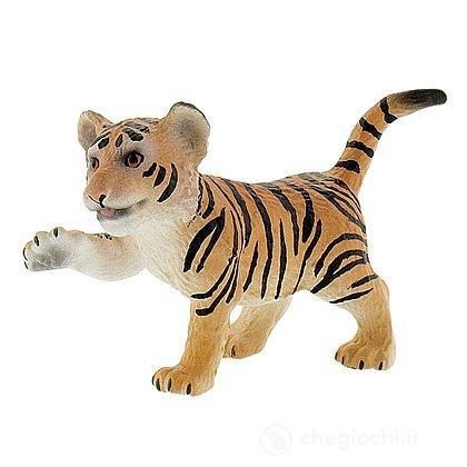 Tigre cucciolo (63684)