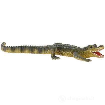 Alligatore cucciolo (63689)