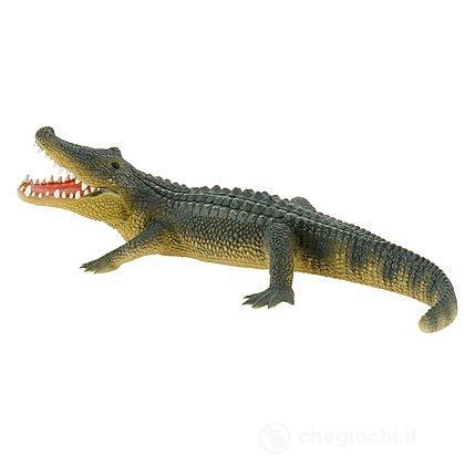 Alligatore (63690)
