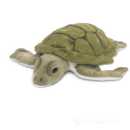 Tartaruga marina grande