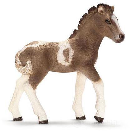 Puledro island pony (13709)
