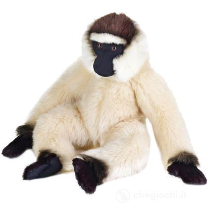 Gibbone Medio (770714)
