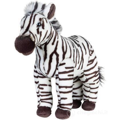Zebra Media (770720)