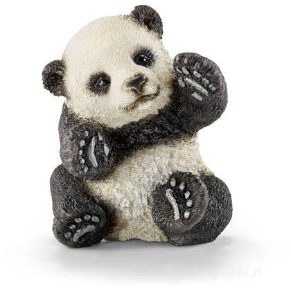 Cucciolo Di Panda Che Gioca (14734)