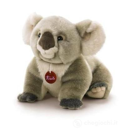Koala Jamin medio