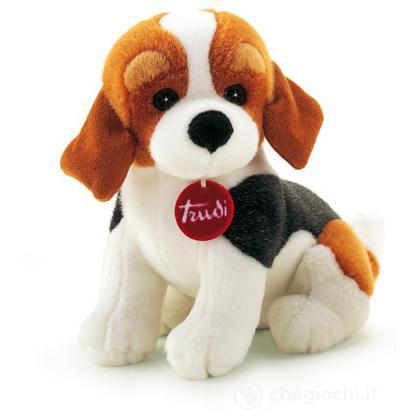 Beagle Ben medio