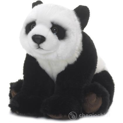 Panda seduto