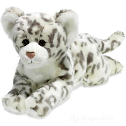Leopardo delle nevi sdraiato