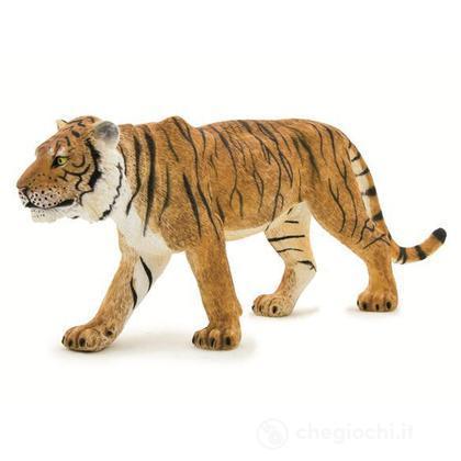 Animal Planet tigre
