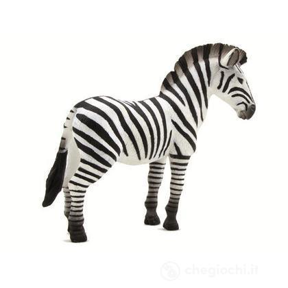 Animal Planet zebra
