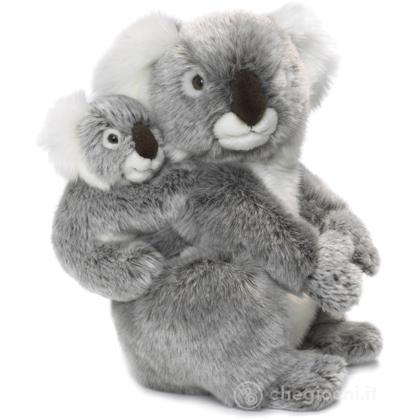 Koala madre e cucciolo