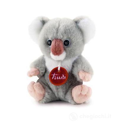 Trudino Koala