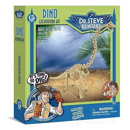 Brachiosaurus Skeleton (CL1665K)