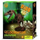Excavation Kit Velociraptor Scheletro