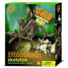 Excavation Kit Stegosauro Scheletro
