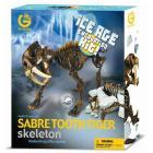 Ice Age Excavation Kit - Tigre dai denti a sciabola scheletro