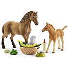 Horse Club Sarah che cura i cuccioli (2542432)