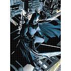 Dc Universe Batman Vigilantepuzzle