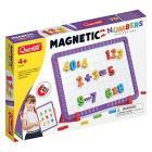 Magnetino con 48 Numeri