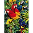 Majestic Macaws 1000 pezzi Magic Puzzle 3D (39188)