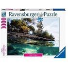 Puzzle 1000 pezzi Punti Di Vista (16198)