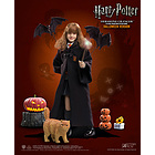 Hp Hermione Halloween 12inch Af