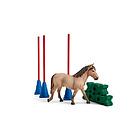 Slalom per pony (2542483)