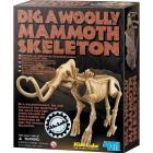 Scava un fossile di Mammut (03236)
