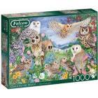 1000 Falcon - Gufi Nel Bosco