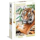 Sumatran tiger 1000 pezzi High Quality Collection (39295)