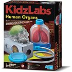 Laboratorio Organi Umano (03374)