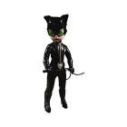 Ldd Dc Universe Catwoman