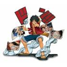 One Piece - Monkey D.Luffy Age