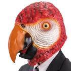 Maschera pappagallo in lattice