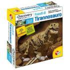Fossili di Tirannosauro (3566)