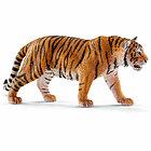 Tigre (2514729)
