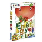 Expo 2015 - Puzzle 250