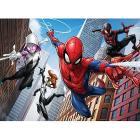 Spider-Man (12730)