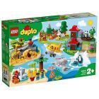 Animali del mondo - Lego Duplo Town (10907)