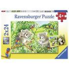 Dolci Koala e Panda Puzzle 2x24 pz (07820)