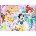 Disney Princess (10857)